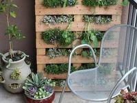 Gardening & Landscape interests