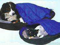 Ideas for Tent camping