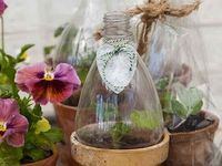 Gardening ~ Flowers and Outdoor Decor