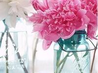 Flowers the wonder of