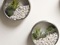 Lovely little garden ideas