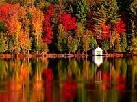 For Autumn