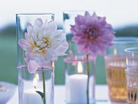Par-tay - Party Planning Ideas and Tools