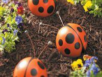 Outdoor living/Gardening
