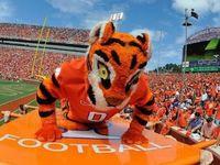 I love my Clemson Tigers!!