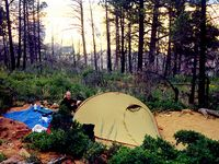~Backpacking, Hiking, and Camping~
