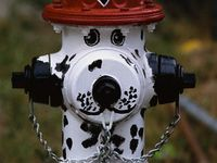 Fire hydrants play a vital role in our everyday life, but they are often taken for granted and overlooked.  Not anymore!  Check out these incredible fire hydrants.  When you see a hydrant, take a moment to remember how important water is in our lives.