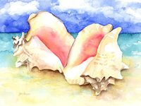 Watercolor: Fish, Shells, Water creatures