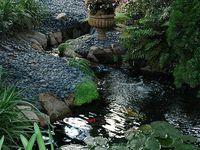 Ponds, Fountains, Streams, Creeks, etc