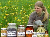 Herbs & Natural healing