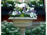 Gardening - container