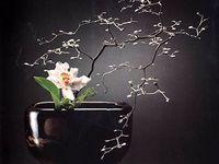 2) Ikebana