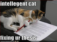 Pets and Doc Projects