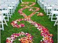 Wedding Ideas LOL