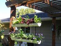 Outdoor yard & patio ideas