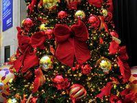 Christmas trees@ mantels