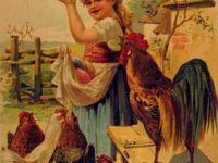 poulets et oeufs