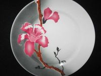 Generally the sturdiest china you'll ever find, frequently among the most beautiful, and always a delight to handle and use.  The feel of restaurant china is exceptional: comfortable heft, creamy thickness, satiny surface.   And it comes with a sense of history and place that adds to its charm.