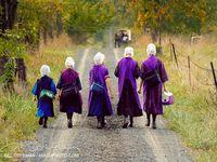 Amish simplicity
