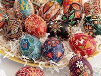 creative eggs