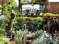 The Ultimate Backyard