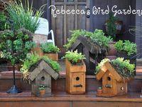 Birdhouses, Feeders, DIY Projects, Bird-Loving Plants