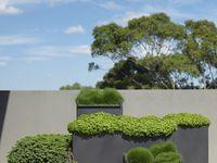 terrace, backyard & pools.