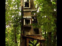 Tree house love