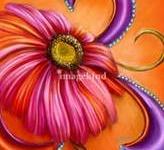 Color...Orange & Hot Pink