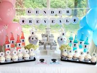 Baby Revealing Party Ideas, Baby Revealing, Twins Baby Shower, Baby Revealing Celebration