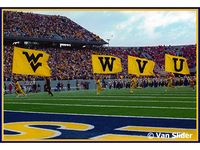 Let's Go Mountaineers
