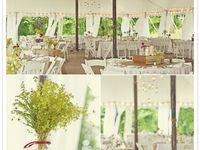 I want to plan weddings
