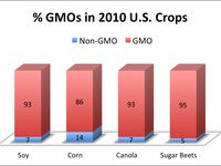 We are what we eat:  the very real dangers of Genetically Modified Foods.