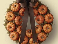 Fall and Harvest Theme