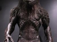 Werewolfs grrrr!!!