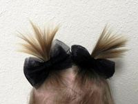 Hair bow how to's & inspiration.