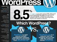 All things relating to the number one blogging platform & CMS on the planet, Wordpress! Tips, tricks, themes, widgets and plugins galore.