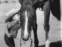 Horsey things that I love, horse pictures, cowboy/country quotes, ect... :)