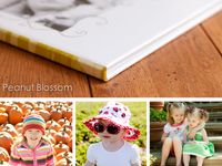 Photo displays and projects