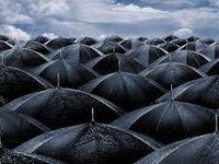 RAIN - the eye of the storm