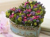 Flower arrange fresh flowers