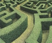 Mazes & Crop Circles