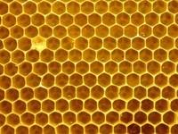 Hexagon (Biene, Honig, Wabe)