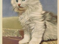 Vintage Card Cats