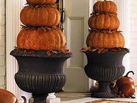 Holidays ----- Halloween, Fall & Thanksgiving
