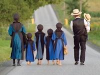 Amish life ☆
