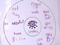 Thinking Map activities on Pinterest