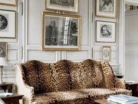 Home, Decor & Interiors