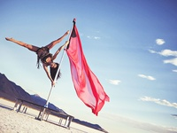 Pole and Aerial Fitness
