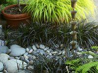 Grove (Shade) Garden Project